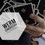 The Werm